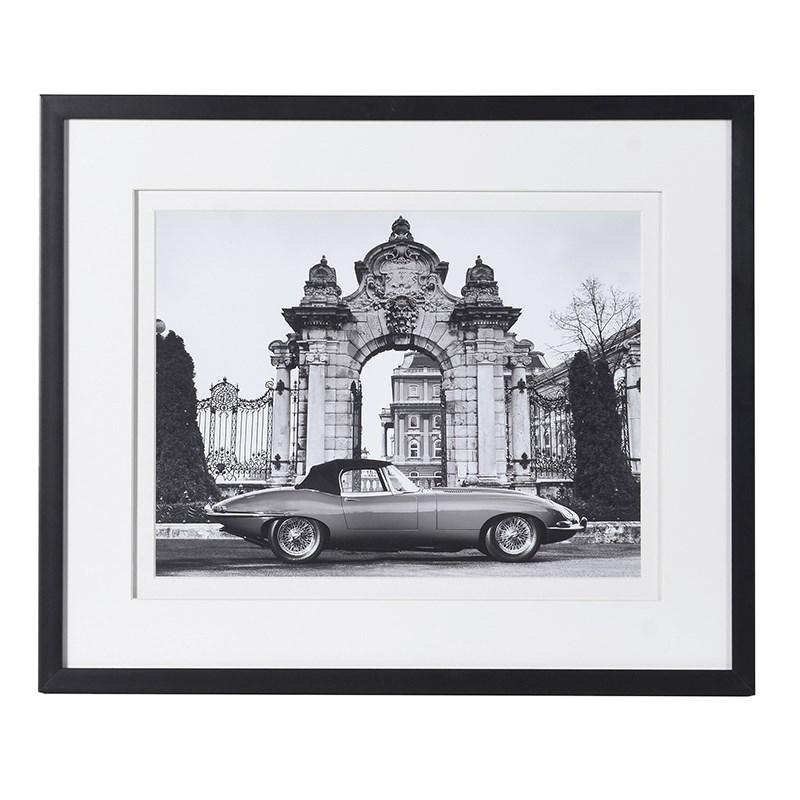 Jaguar Frame