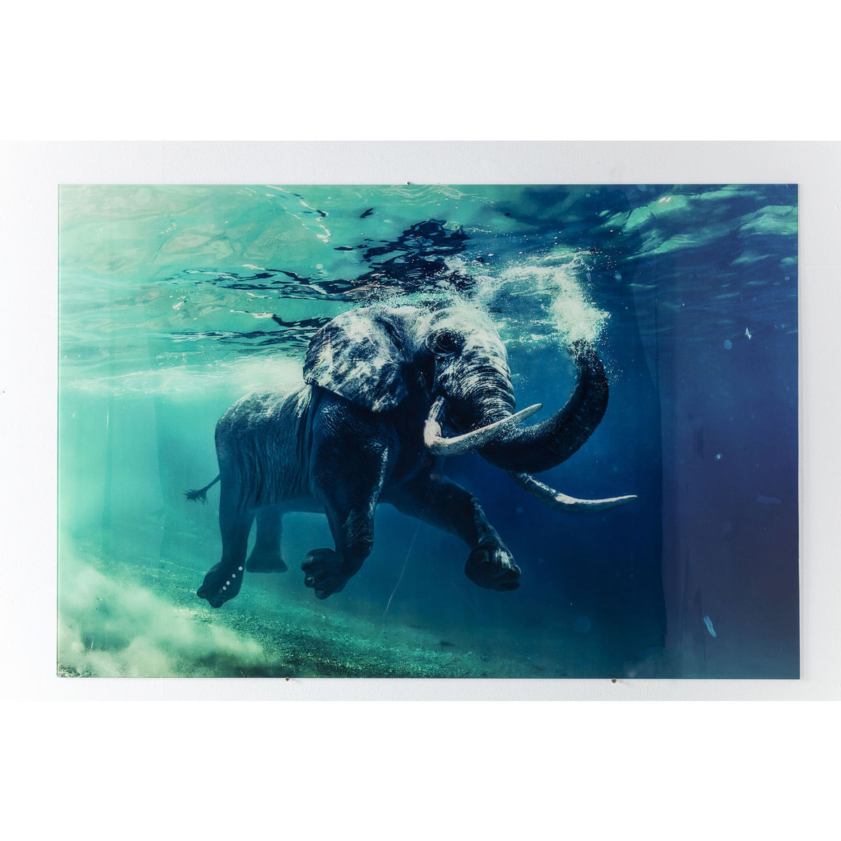 Swimming Elephant Picture