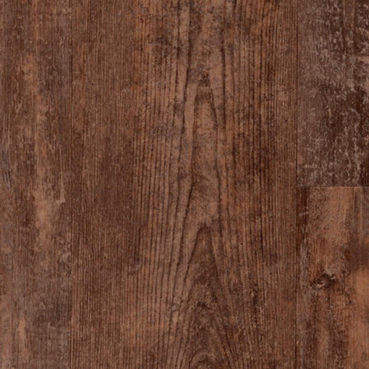 Aged Kauri