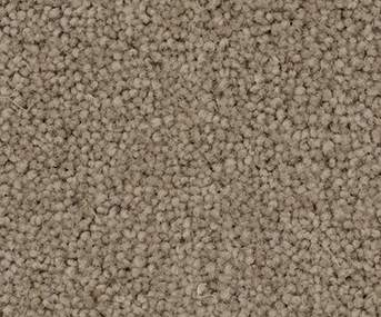 Osborne Luxury Twist Carpet - The Great Room