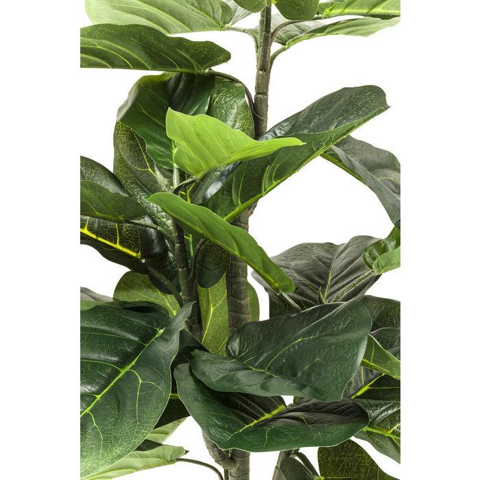 Deco Plant