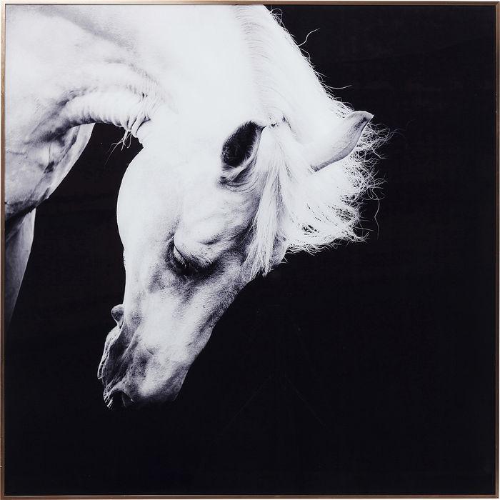 Proud White Horse Frame