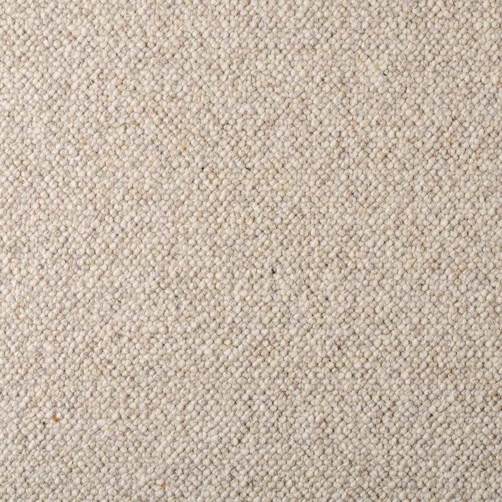 Wool Speckle Wren