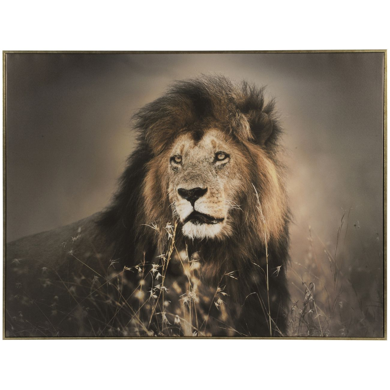 Lion Framed Canvas Wall Art