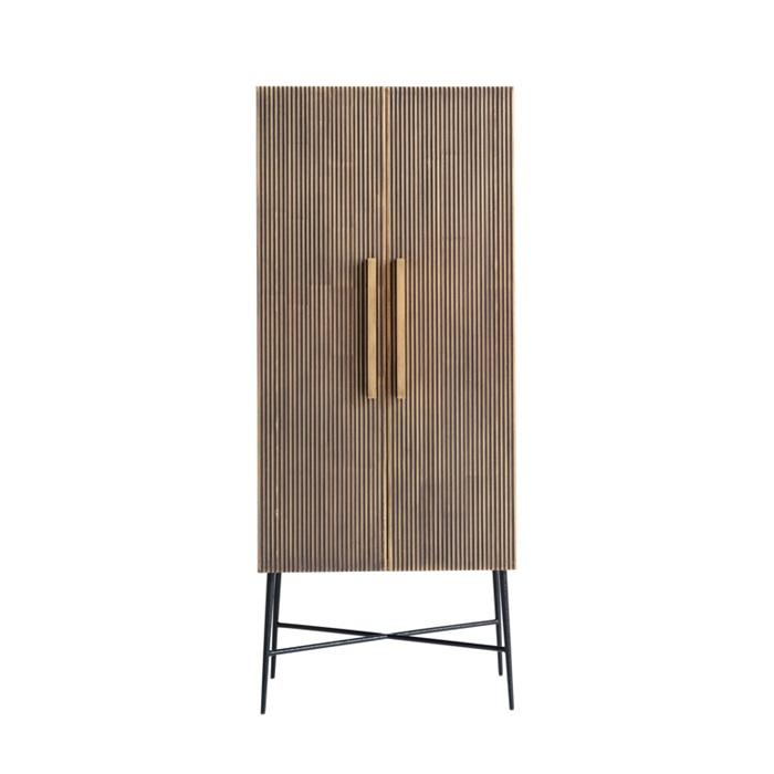 Ironville 2 Door Cabinet