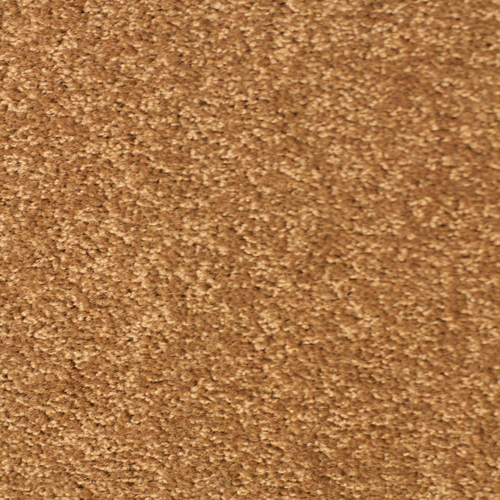 Solar Carpet - Sepia
