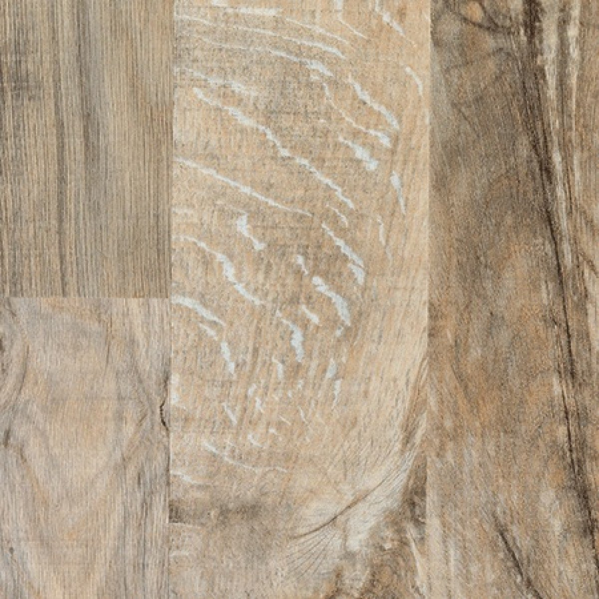 Arctic Driftwood