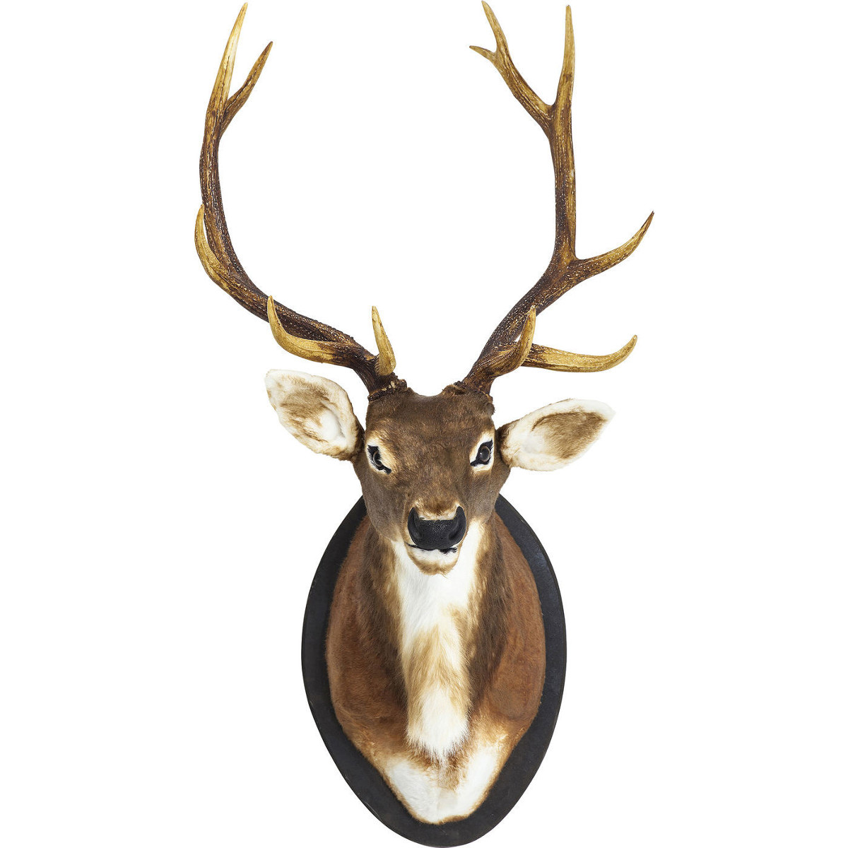 Deer Antler Wall Decoration