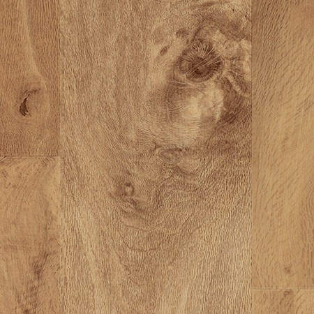Auckland Oak