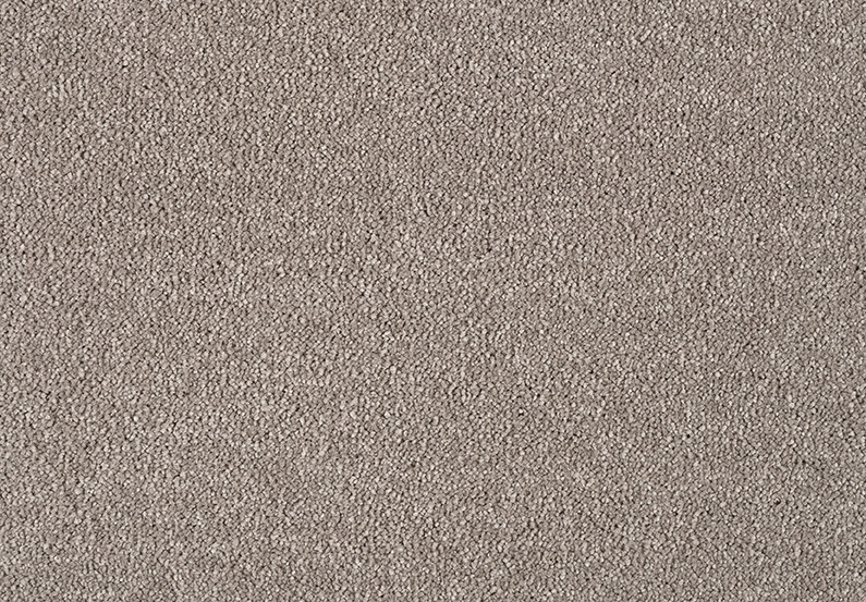 Caseys Celeste Carpet - Chicory