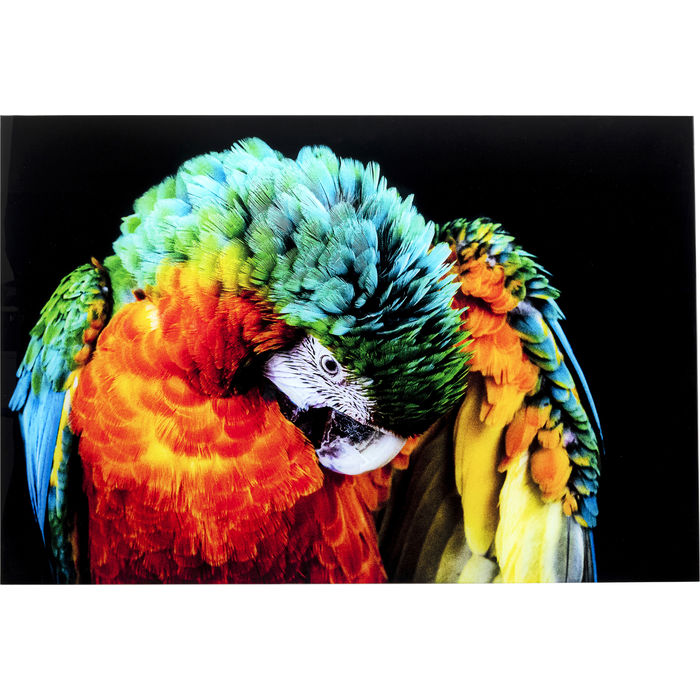Tropical Parrot Glass Picture